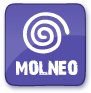 Medical Society for the Treatment of Neuroendocrine Tumors (MOLNEO)